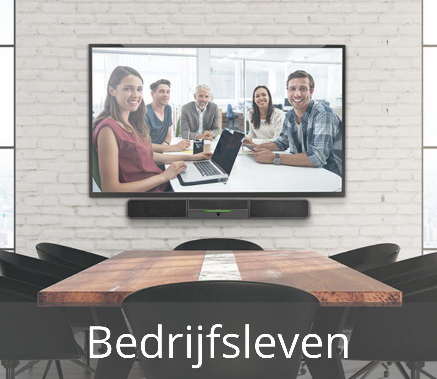 Bedrijfsleven videoconferencing - Media Service